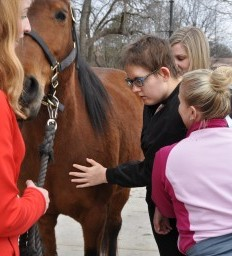 Bellevue Woman Uses Horse Power to Heal