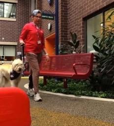 Dani Cota and Luna are Angel Dogs Volunteers