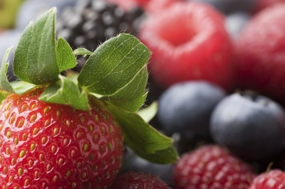 Fight Cell Damage with Antioxidants